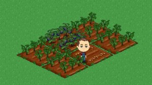FarmVille Facebook Credits