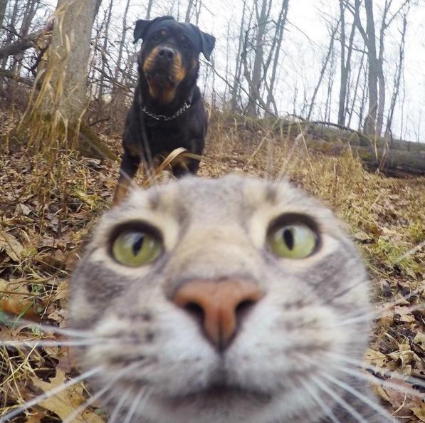 Manny-selfie-1