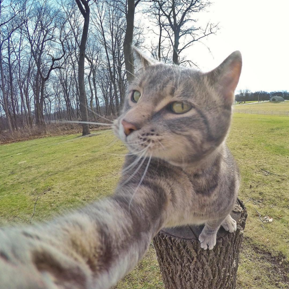 Manny-selfie-2