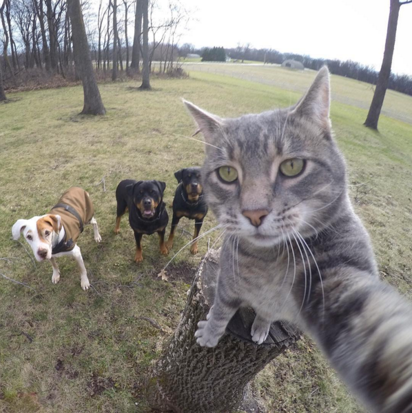Manny-selfie-3