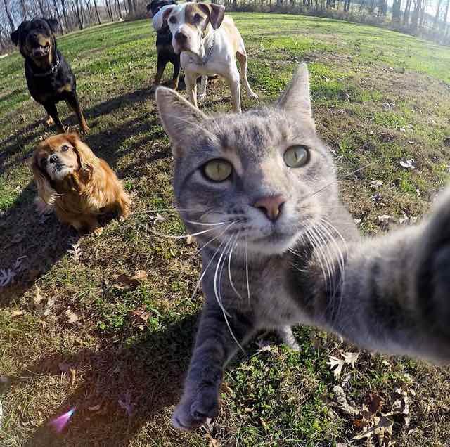 Manny-selfie-4