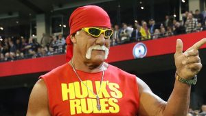 peter-thiel-gawker-hulk-hogan